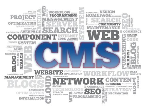 Das passende Redaktionssystem CMS entwickeln wir für Ihre Webseite oder Internetauftritt.